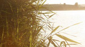 Sonnenuntergang am Seeburgersee bei Göttingen. Fotograf Sonja Mehner